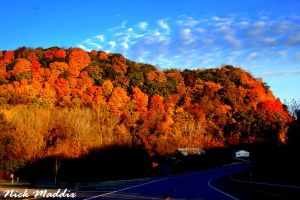 More Iowa Colors in Autumn by moonlightrose44
