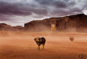 Lonesome Dog by Dapicture