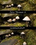 Fairy 'Shrooms 2 by rensstocknstuff