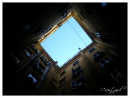 + courtyard. by tomson