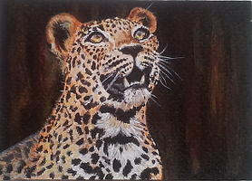 Leopard - acrylics by Giselle-M