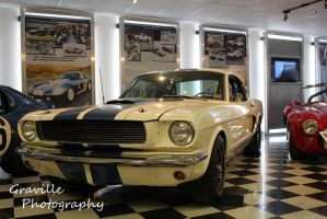 Shelby's Personal Muscle Car by KyleAndTheClassics