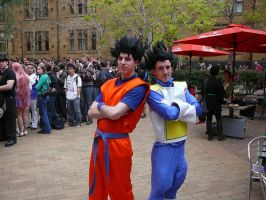 Cosplay: DBZ by BigBossDante