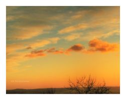 Soft Sky by selley