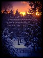 Winter night.. (With English poem) by chikuQ