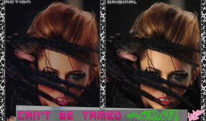 Cant Be Tamed Action for Photoscape by Luiisa9612
