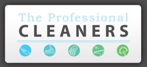 The Professional Cleaners Logo by blue-flamingo
