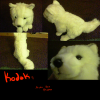 Kodak my new arctic fox plushie by FoxSock