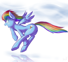 Rainbow dash ...stuff by Nac0n