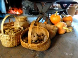 Colonial Bounty Beneath the Table by JMPorter