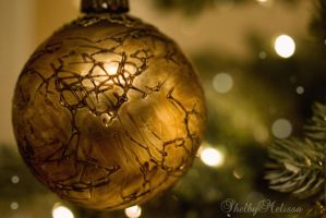 Christmas Bulb by ShelbyMelissa