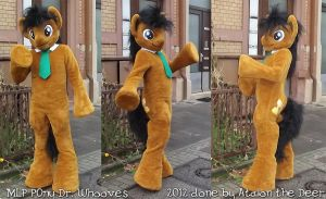 MLP Dr Whooves Fursuit complete by AtalontheDeer