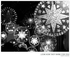 look how they shine for you by peligroso