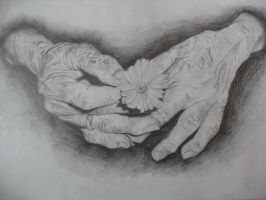 Hands, Memories and Love by TERRIBLEart
