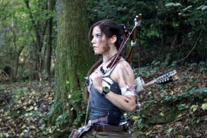 Lara Croft - TR 2013 - 01 by ImeldaCroft