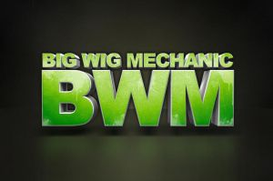 Big Wig Mechanic by rehabgraphics