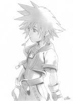 Sora by slan-12
