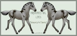 9135 NewYorkTimes Foal Design Holder by HoT-Stables
