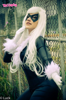 Black Cat [Felicia Hardy] by MelGoncalves