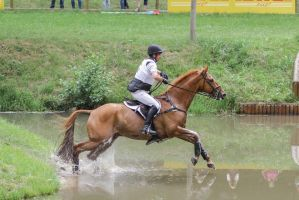 3DE Cross Country Water Obstacle Series XV/12 by LuDa-Stock