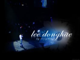 lee donghae everything by viahebumuno