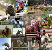 Jumping horse collage by CountryGirl11