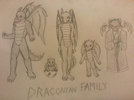 Draconian Family Sketches by ShadowgirlJynnxe