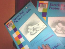 New drawing supplies .: 2 sketch books :. by ShualeeCreativity