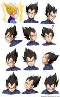 Oujisama no Faces - Vegeta by Sabnock