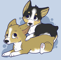 Corgis by layt0n