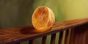 #1- Still life practice- Orange by Obpony