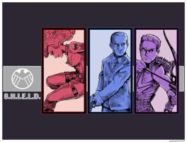 Agents of S.H.I.E.L.D. Take Two by Saturn-Kitty