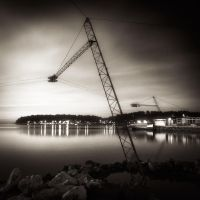Cranes... by denis2
