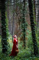 Little Red Riding Hood by laito-laetus