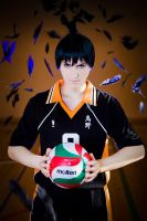 Haikyuu!! Karasuno Crow by general-kuroru