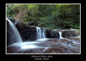 When the Water Flows by Scapes-club