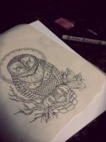 Barn Owl sketch by Atropina-Belladonna