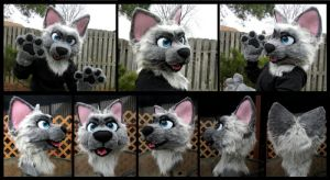 :D My new fursuit! by xRubyCayx