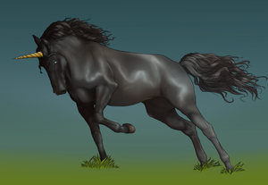 Black Unicorn by Iterie