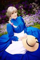 Howl's Moving Castle - Hoary by aco-rea