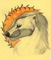 Portrait of badger by Suane