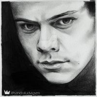 Harry Styles by ludvigsen