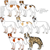 16-Way Mixed Breeds 3 by Leonca