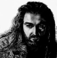 Thorin by K4nspachi
