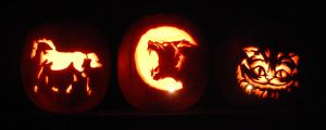 Trio of pumpkins by crazedjacksparrowfan