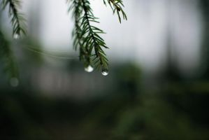 drops by KariLiimatainen