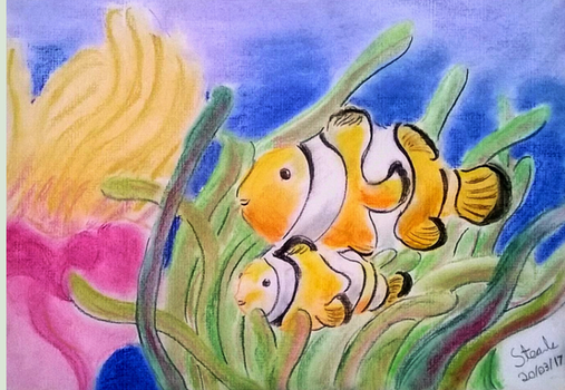Clown fish pastel drawing by SulaimanDoodle