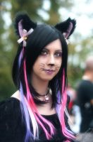 Cosplay - Cheshire cat by Didi-hime