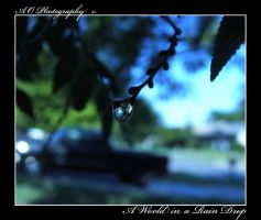 A World in a Rain Drop by AO-Photography