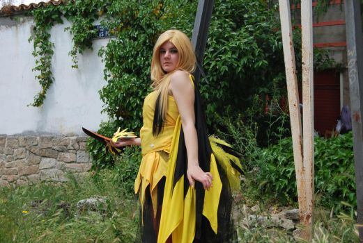Zapdos 07 by TheQueenMab